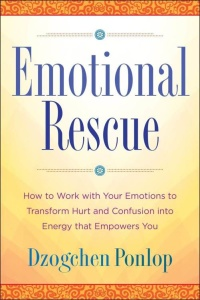 Emotional Rescue   How to Work with Your Emotions to Transform Hurt and Confusion