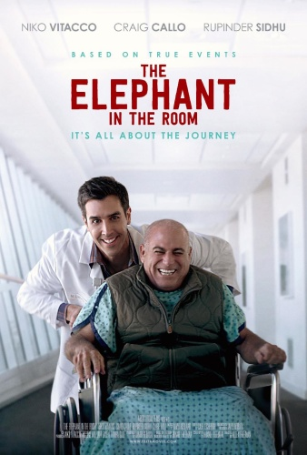 The Elephant in the Room 2020 1080p AMZN WEB-DL DDP5 1 H 264-ISA