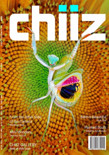 Chiiz - Volume 32 - November (2019)