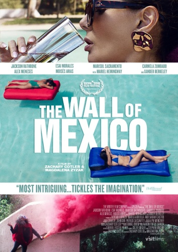 The Wall of Mexico 2020 1080p WEB-DL DD5 1 H 264-EVO