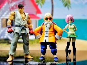 Dragon Ball - S.H. Figuarts (Bandai) VDzlZyyK_t