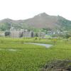Hiking Tin Shui Wai - 頁 14 QLMXn7Uj_t