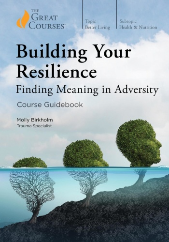 Building Your Resilience   Finding Meaning in Adversity