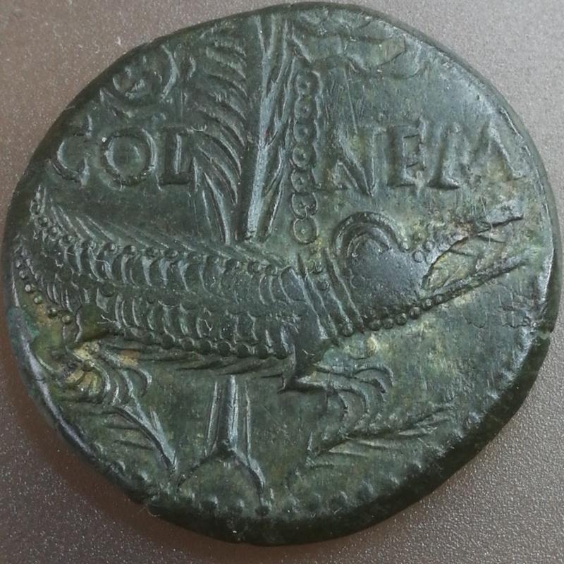 Un bel as de Nîmes XojGPFjm_t