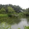 Hiking Tin Shui Wai - 頁 14 DoNnXpq1_t