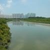 Hiking Tin Shui Wai - 頁 14 36gdvQmO_t