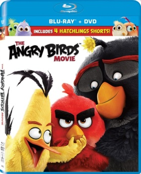 Angry Birds - Il film (2016) BD-Untouched 1080p AVC DTS HD-AC3 iTA-ENG