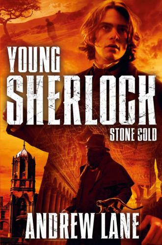 Stone Cold - Andrew Lane