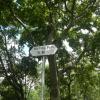 Hiking Tin Shui Wai - 頁 14 BvNUZAv9_t