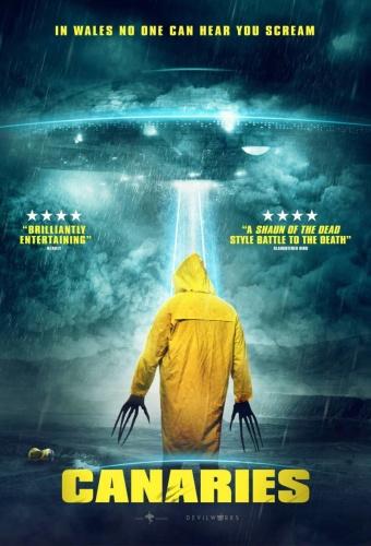 Canaries (2017) 720p WEBRip x264 ESubs [Dual Audio][Hindi+English] -=!Dr STAR!=-