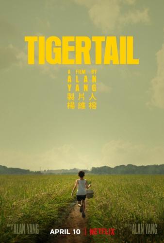 Tigertail 2020 1080p WEBRip x264-RARBG