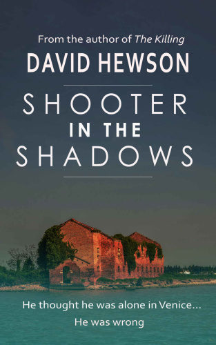 Shooter in the Shadows by David Hewson