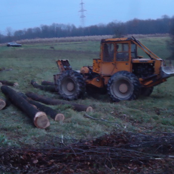 Traktor šumski LKT 81 T MBBa7VB6_t