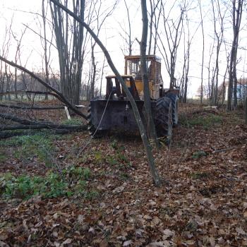 Traktor šumski LKT 81 T QcF47vky_t