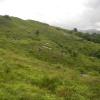 Hiking Tin Shui Wai - 頁 14 HFu4H3bO_t