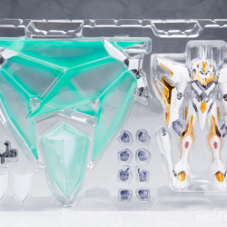 "Gundam : Code Geass - Metal Robot Side KMF ""The Robot Spirits"" (Bandai) - Page 3 EuPiUBdX_t"
