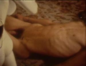 Diasparagmos 1980