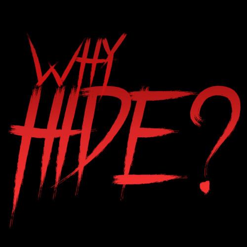 Why Hide 2018 1080p AMZN WEBRip DDP2 0 x264-ABM