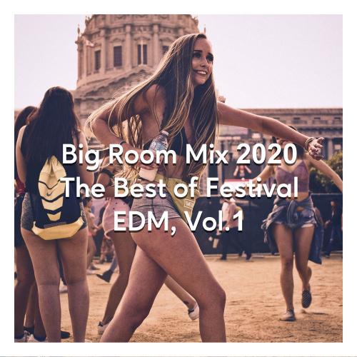 Big Room Mix 2020 The Best Of Festival EDM Vol 1 (2020)