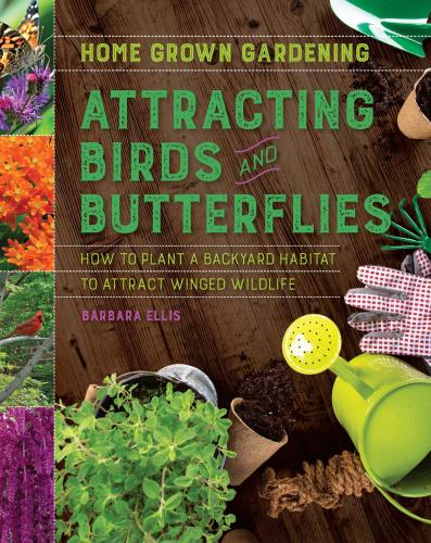Attracting Birds and Butterflies   Barbara Ellis