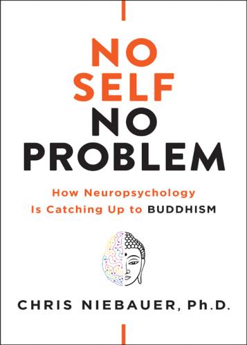No Self No Problem - Chris Niebauer