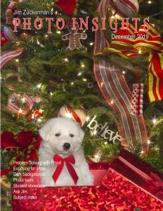 Photo Insights - December (2019)