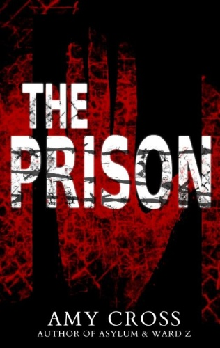The Prison   Amy Cross
