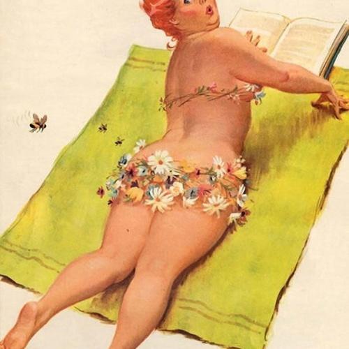 Jcpenney plus size swimwear