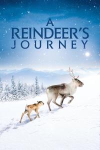 A Reindeers Journey 2019 BDRip XviD AC3-EVO