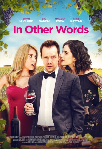 In Other Words 2020 HDRip XviD AC3-EVO