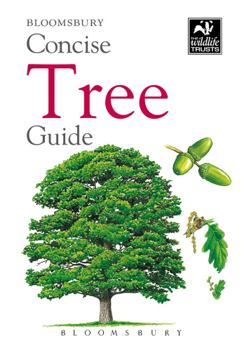 Concise Tree Guide (gnv64)