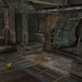 Fallout Screenshots XIV - Page 21 XieMwa18_t