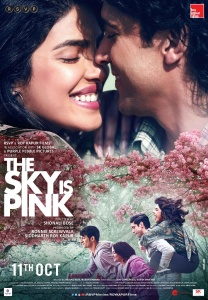 The Sky Is Pink 2019 Hindi 720p NF WEBRip x264 AAC 5 1 ESubs - LOKiHD