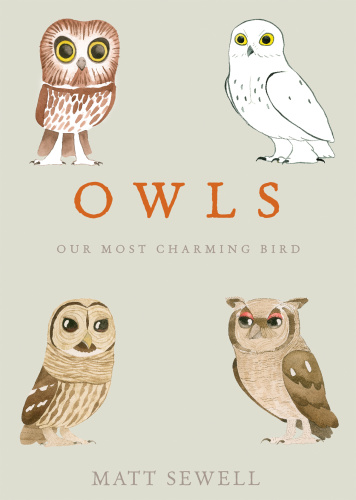 Owls Our Most Charming Bird