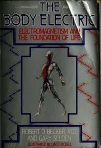 The Body Electric- Electromagnetism and the Foundation of Life
