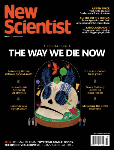 New Scientist Int 23 11 (2019)