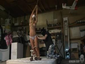 Fantasy Damsels Cherie Deville 1 - BDSM, Punishment, Bondage