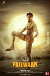 Pailwaan (2019) Hindi Dubbed HDTVRIp x264 AAC