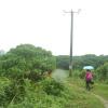 Hiking Tin Shui Wai - 頁 14 M6Jvdwe1_t