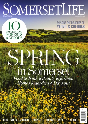 Somerset Life  March (2020)