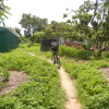 Hiking Tin Shui Wai - 頁 14 R6UoJVux_t