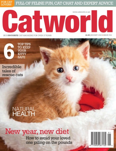 Cat World - Issue 502 - January (2020)