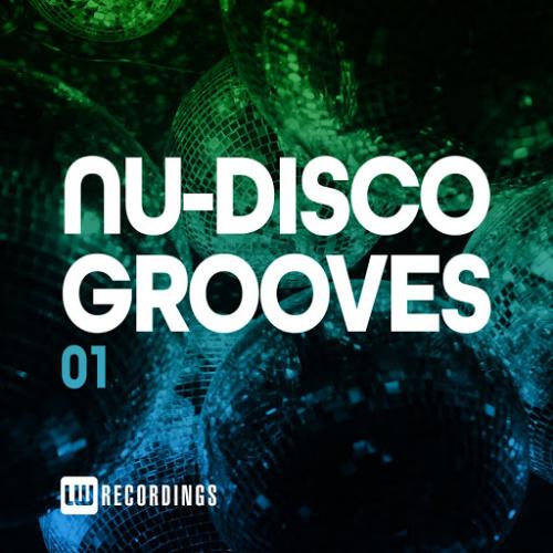 VA   Nu Disco Grooves Vol 01 (2020)