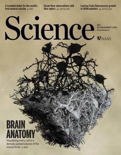 Science - 29 November (2019)