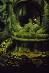 Конан-варвар / Conan the Barbarian (Арнольд Шварценеггер, 1982) - Страница 2 GwHmNaIS_t