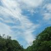Hiking Tin Shui Wai - 頁 14 1w9MpsL4_t