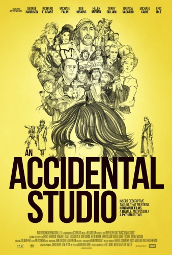 An Accidental Studio 2019 1080p STAN WEBRip DDP5 1 x264-NOGRP