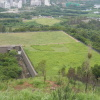 Hiking Tin Shui Wai - 頁 14 BDeiZ4wN_t