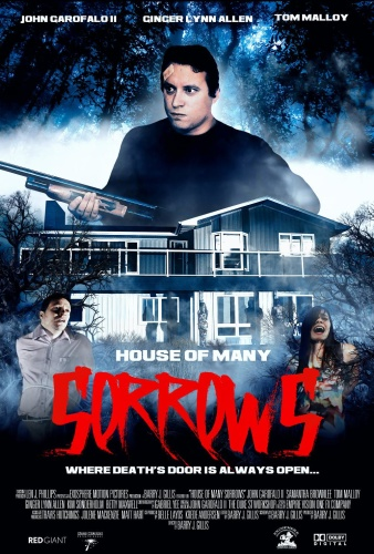 House of Many Sorrows 2020 1080p WEBRip AAC2 0 x264-RR