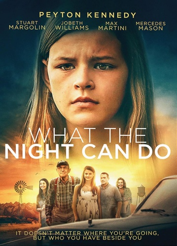 What the Night Can Do 2020 HDRip XViD AC3-EVO